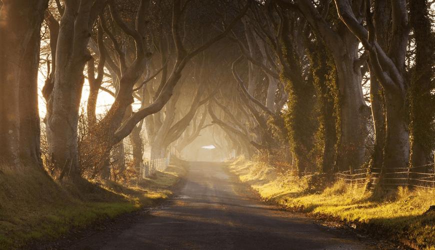 Игра на тронове Ирландия